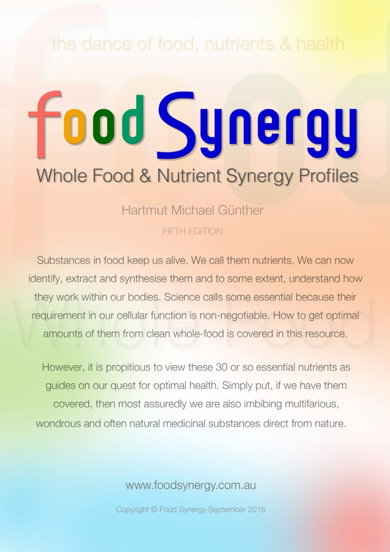 Food-Synergy-Cover-Book-1000w