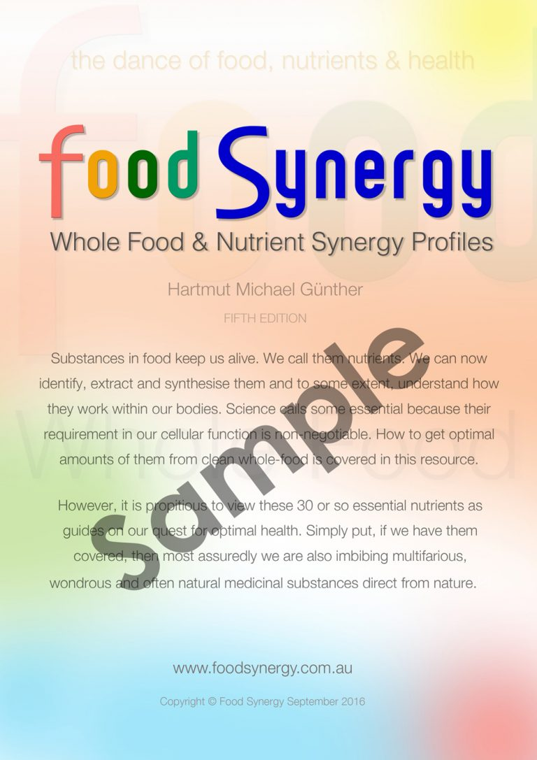 Food-Synergy-Cover-Sample-1000w