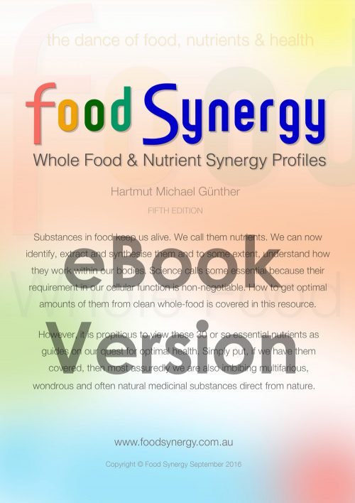 Food-Synergy-Cover-eBook-version-1000w